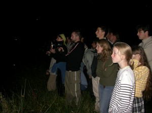 bat-night-groupe